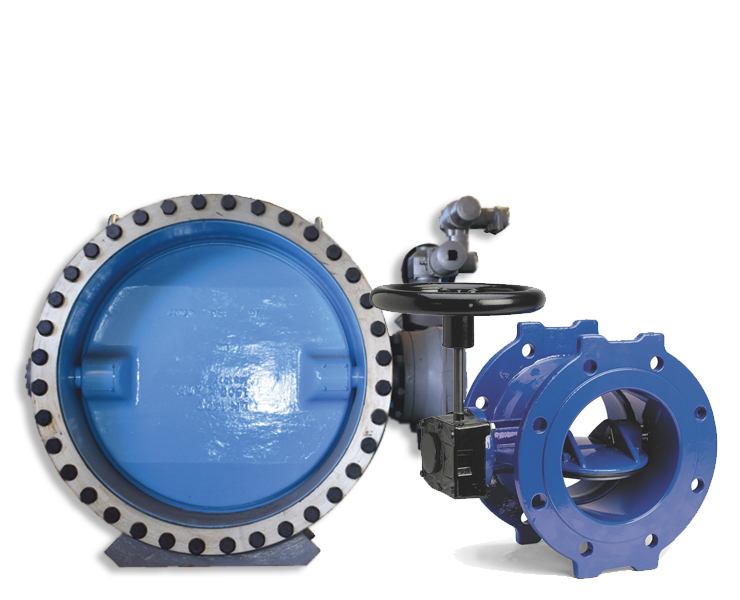 Butterfly valves for water